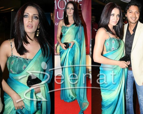 Celina Jaitley Indian Saree Designs