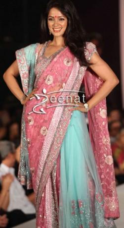 Vidya-Malvade-In-Designer-Net-Saree