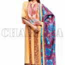 Charizma Fall Winter Collection 2013 (6)