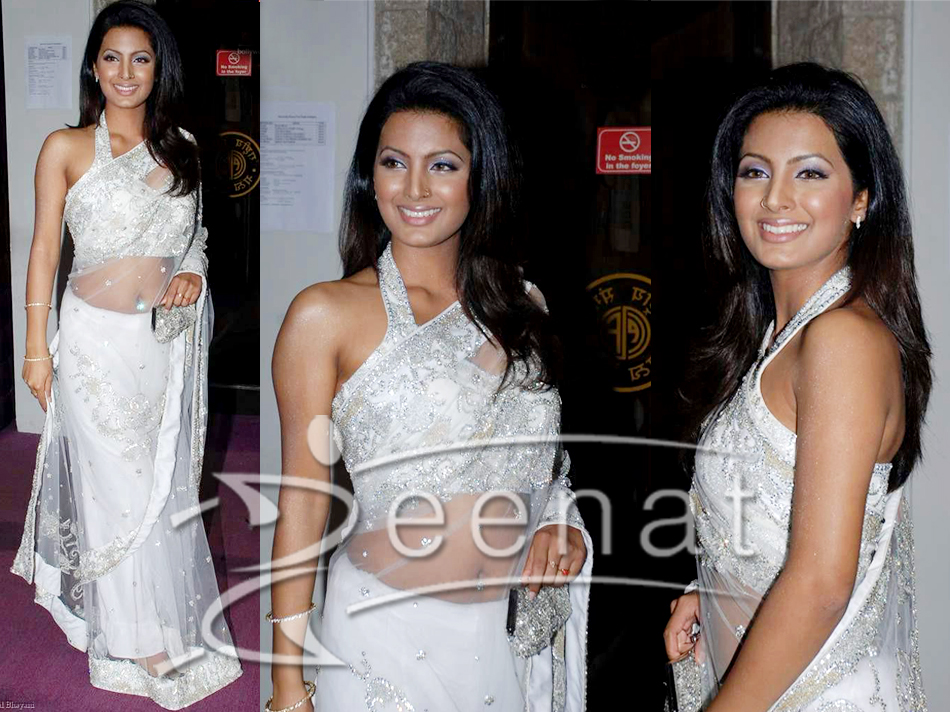Indian Net Embroidered White Saree