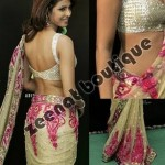 Priyanka Chopra In Indian Saree