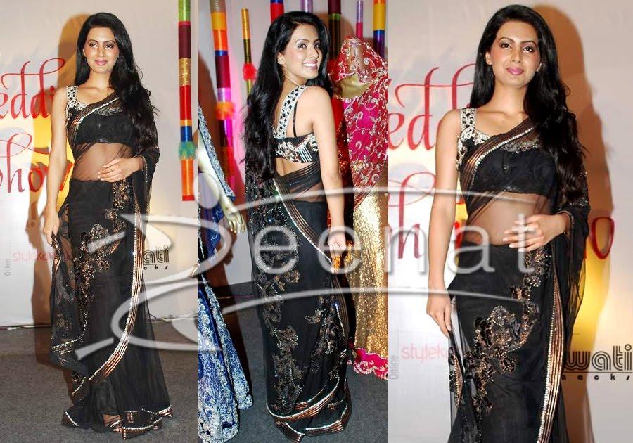 Geeta Basra Indian Net Saree