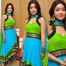 Payal Ghosh Harika Designer Anarkali Salwar Kameez