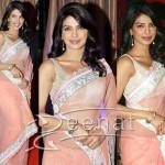 Priyanka Chopra In Net Saree Styles