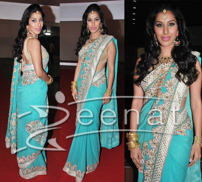 Sophie Chaudhary Indian Sarees
