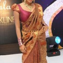 Amala Paul In Indian Banarsi Saree