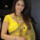 Anjana Sukhani Indian Sarees