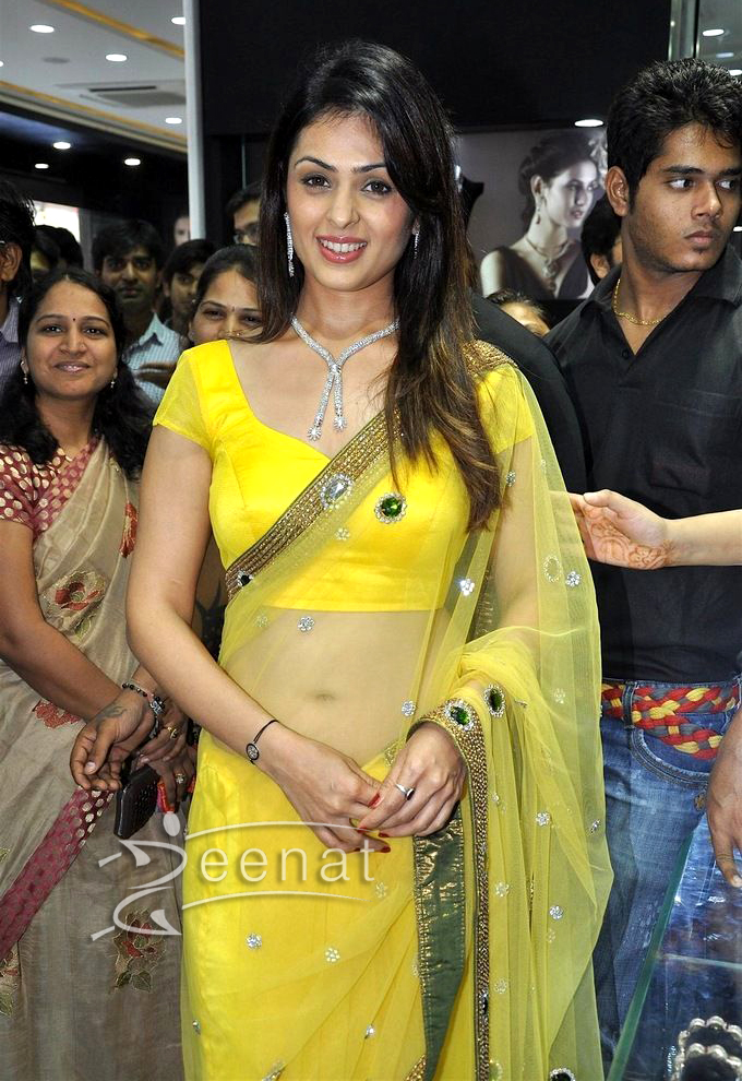 Anjana Sukhani Yellow Saree