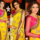 Bipasha Basu Indian Chiffon Saree