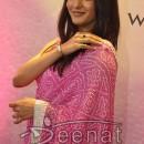 Raima Bollywood Saree Style