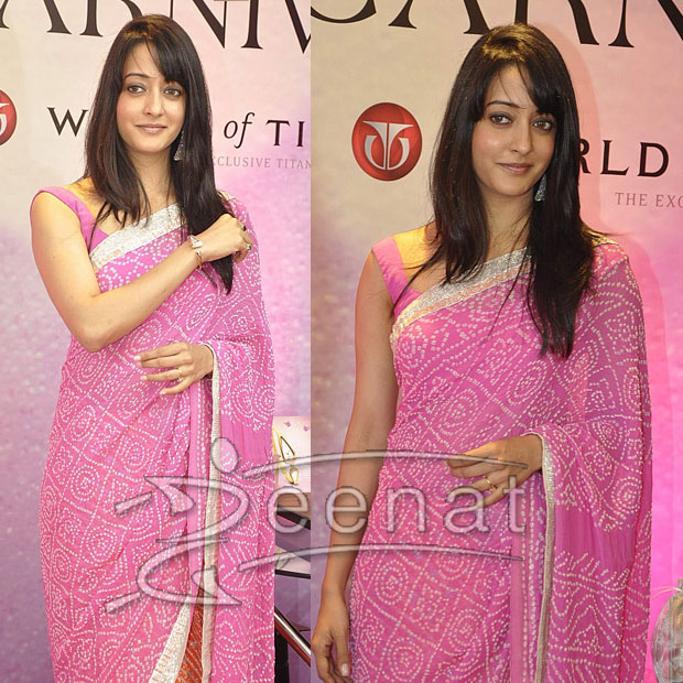 Raima Sen Indian Saree
