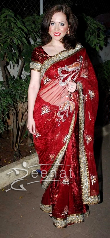 Saidah Jules Red Net Saree