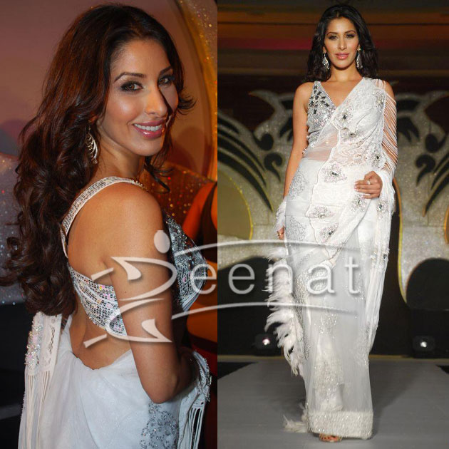 Sophie Chaudhary Indian Saree