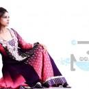 Deebaj | Chiffon Winter Collection 2011-2012