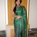 Dia Mirza Green Sarees