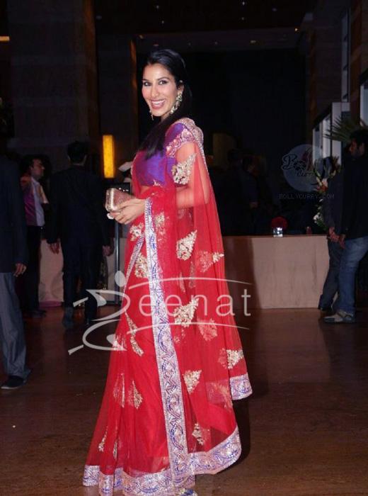 Sophie Chowdhary Grace Ritesh Deshmukh Genelia Dsouza Wedding