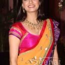 Dia Mirza Half Saree Design | Ritesh Genelia's Sangeent Ceremony