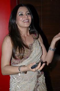 Mahima Indian bollywood Saree