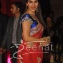 Sophie Choudhary at Ritesh Deshmukh Genelia Wedding Reception at Hotel Grand Hyatt in Mumbai
