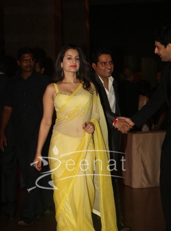 Amisha Patel at Ritesh Deshmukh Genelia Wedding Reception
