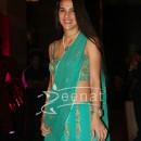 Tara Sharma at Ritesh Deshmukh Genelia Wedding Reception at Hotel Grand Hyatt in Mumbai