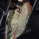 Dia Mirza in Indian Saree