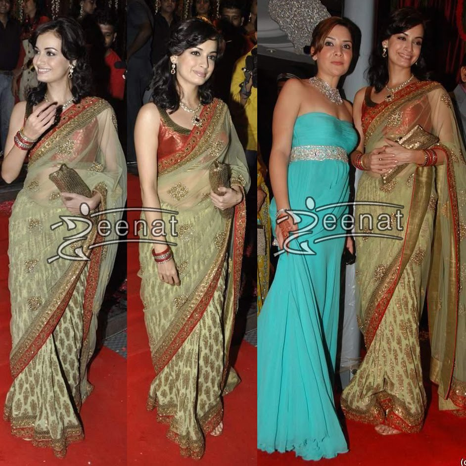 Dia Mirza in Stylish Saree
