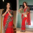Katrina Kaif in Indian Saree