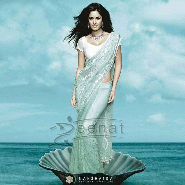Katrina Kaif In Net Indian Saree
