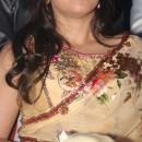 Mahima Saree Style