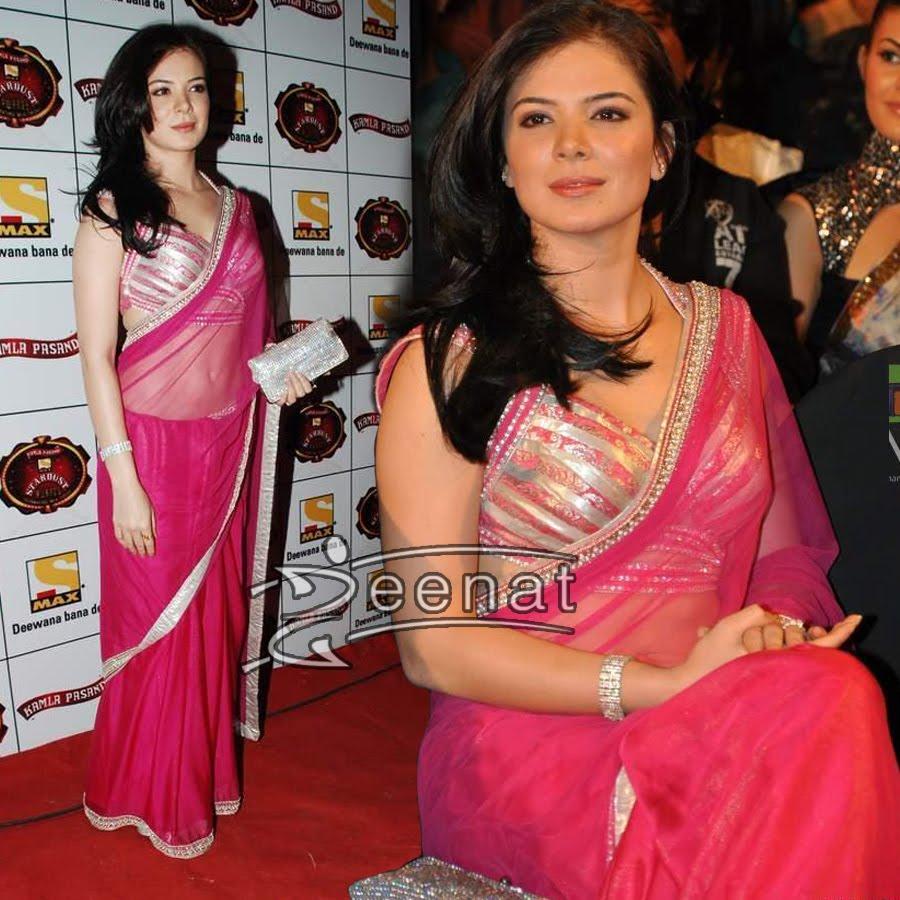 Urvashi Sharma In Net Pink Saree