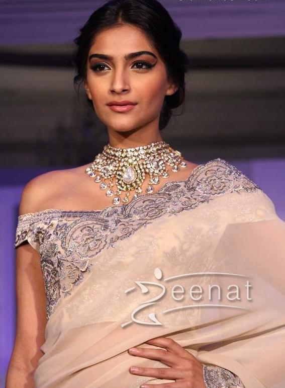 Sonam Kapoor Sarees (4)