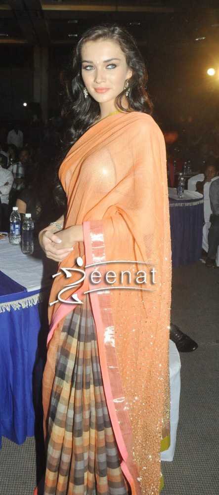 Amy Jakson In Checked Designer Saree