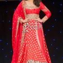 Parineeti Chopra In Designer Lehenga Choli