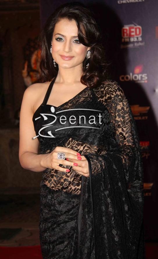 Gorgeous Amisha Patel In Dark Net Saree