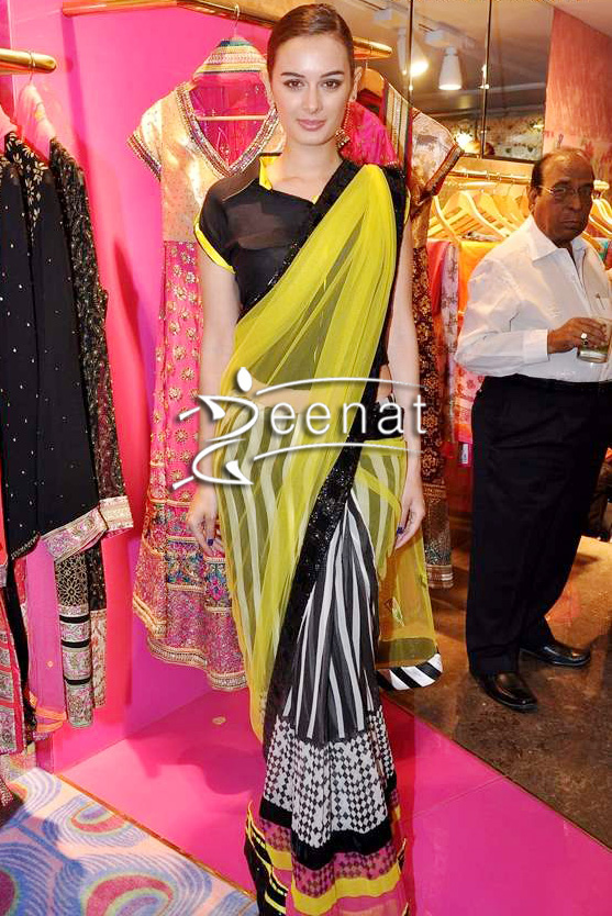 Evelyn Sharma In Designer Manish Arora Saree