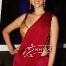 Aditi Rao Hydari In Designer Rakesh Agarvwal Saree