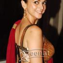 Aditi Rao Hydari In Designer Rakesh Agarvwal Saree At Lonely Planet Travel Awards 2013.