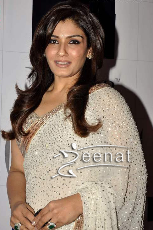 Raveena Tandon In Embroidered Saree