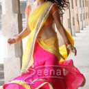 Hansika Matwani In Colorfull Saree