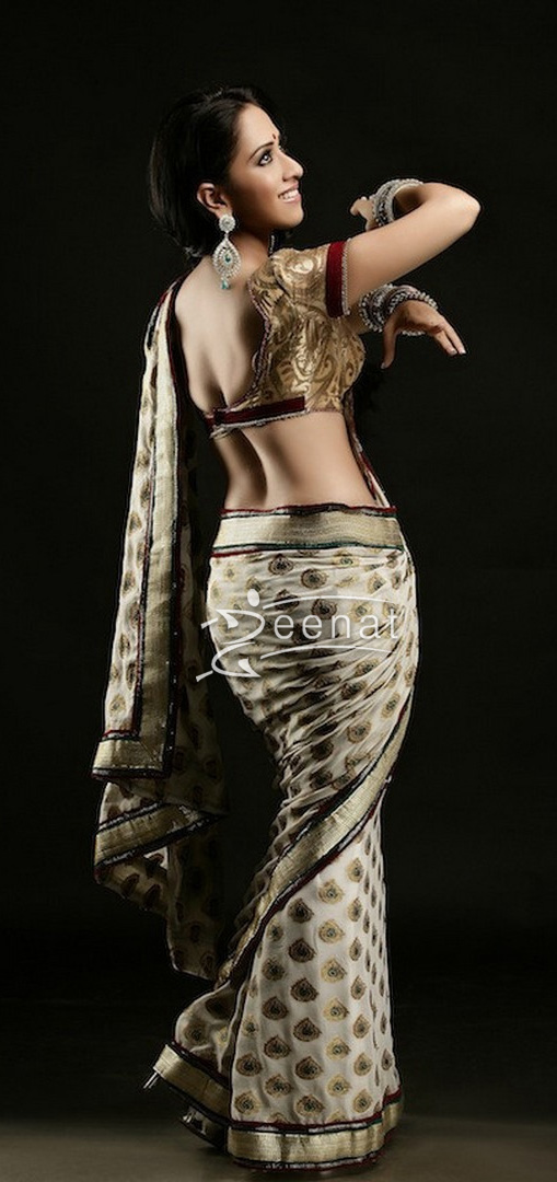 Monali Sehgal In Bollywood Saree