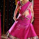 Nisha Agarwal in designer saree