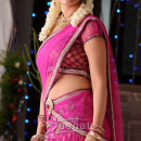 Nisha Agarwal in bollywood saree