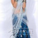 Nisha Agarwal in bollywood Saree