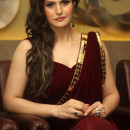 Zarine Khan New Picture In Saree