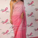 English Actress Elizabeth Hurley In Saree