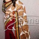 Karishma In Designer Saree 1A