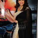 Madhuri Dixit In Bollywood Saree