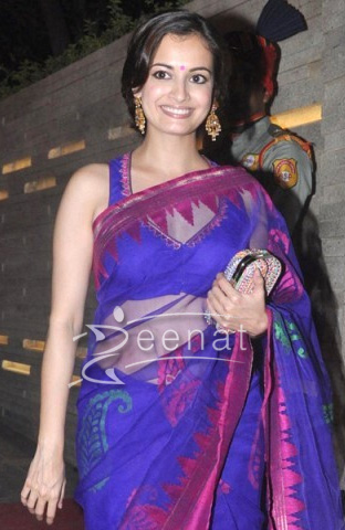 Dia Mirza In Saree At Diwali