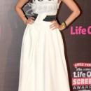 Chitrangada Singh at 2014 Annual Screen Awards